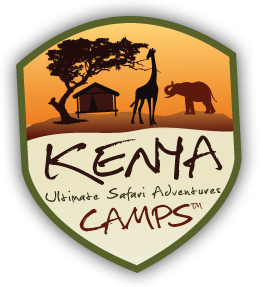 Kenya Camps Ultimate Safari Adventure!
